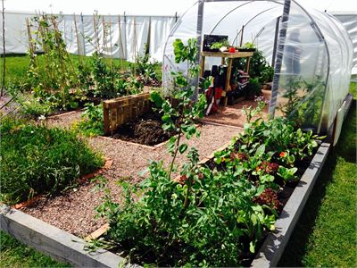 The Ultimate Allotment Garden 2015 by Clan Horticulture Gardening Scotland