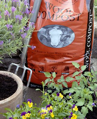 Outdoor pots with Wool Compost