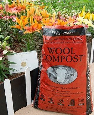 Lilies grown by Hyde Lilies in Dalefoot Woool Compost win Gold at Chelsea